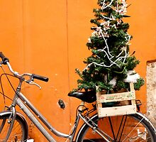 Christmas Bicycle by Rae Tucker