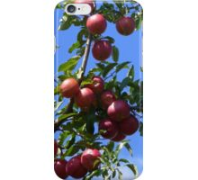 Apple Abundance  iPhone Case/Skin