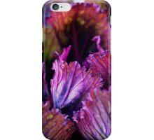 Ornamental Cabbage Rainbow iPhone Case/Skin