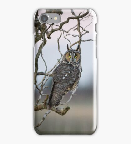 Hunting Imminent -- Long-eared Owl iPhone Case/Skin