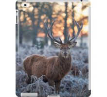 Christmas  Stag 1 iPad Case/Skin