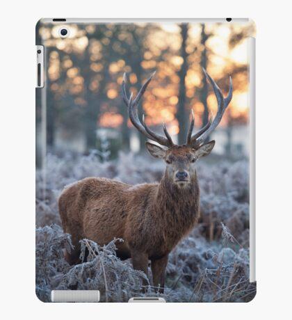 Christmas  Stag 1 iPad Case/Skin