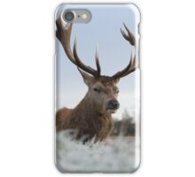 Christmas Stag 2 iPhone Case/Skin