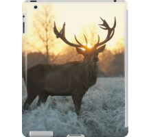 Christmas  Stag 4 iPad Case/Skin