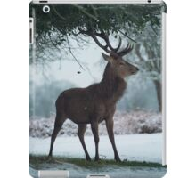Christmas  Stag 10 iPad Case/Skin