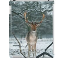 Christmas  Stag 5 iPad Case/Skin