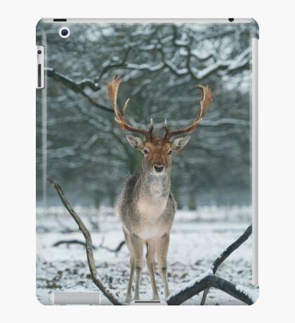 Christmas  Stag 5 iPad Case/Skin