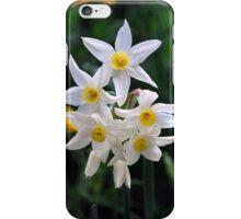 Joyous Springtime!! by Lorraine McCarthy iPhone Case/Skin