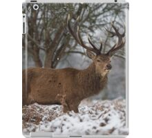 Christmas  Stag 6 iPad Case/Skin