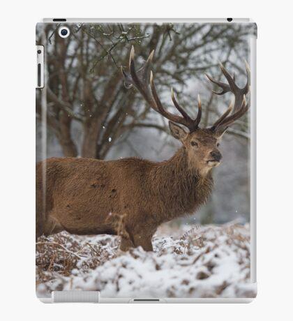 Christmas  Stag 6 iPad Case/Skin
