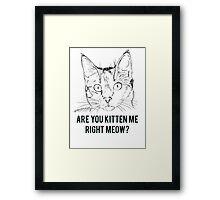 Kitten Me Right Meow? Framed Print