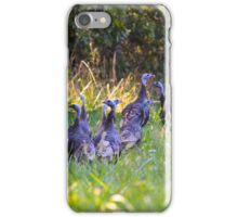 A Rafter Of Wild Turkeys    iPhone Case/Skin