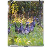 A Rafter Of Wild Turkeys    iPad Case/Skin