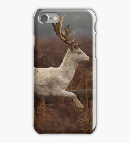 Christmas  Stag 8 iPhone Case/Skin