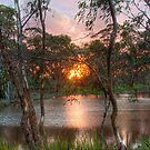 Thorn Park - Sunset, Clare, South Australia by Mark Richards