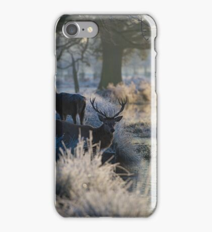 Christmas  Stag 9 iPhone Case/Skin