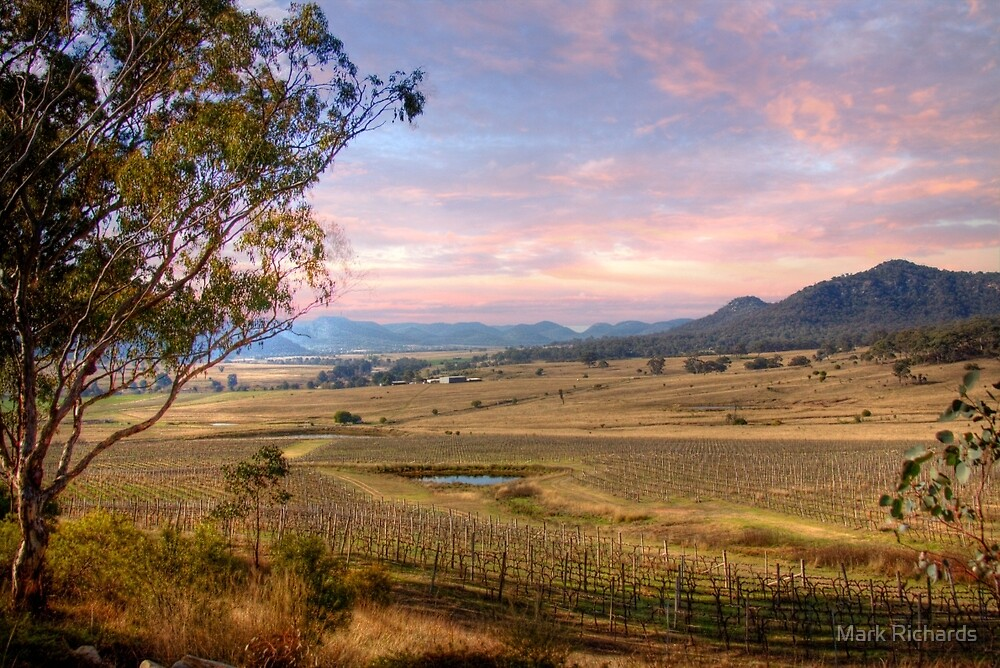Denman Winery - Near Muswellbrook, NSW by Mark Richards