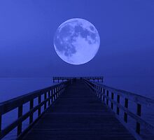 Blue Night by Nathan Little