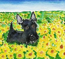 Scottie Dog 'Among The Sunflowers' watercolour by archyscottie