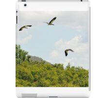 Birds in Flight,Wetlands near Cooktown iPad Case/Skin