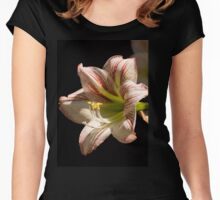 Amaryllis in the dew Women's Fitted Scoop T-Shirt
