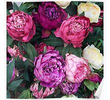 Pink/Purple Flowers Poster