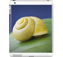 Snail with shell on leaf in detail iPad Case/Skin