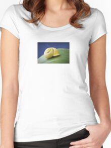 Snail with shell on leaf in detail Women's Fitted Scoop T-Shirt