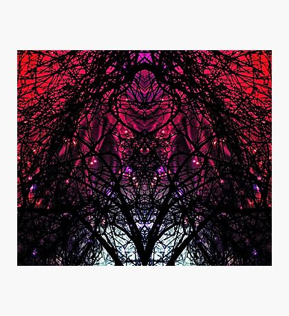 SKULL TREE GALAXY LIGHT Photographic Print