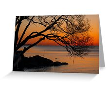 Colorful Quiet Sunrise on the Lake  Greeting Card
