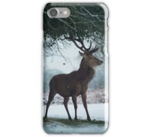 Christmas  Stag 10 iPhone Case/Skin