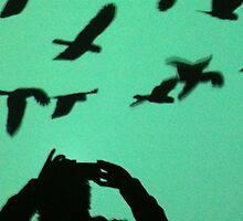 Birds by IPhone by Saren Dobkins