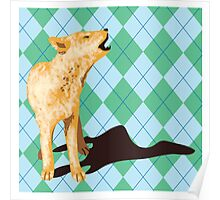 Dingo in green Poster