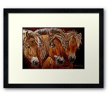 """Larry,Curlie and Moe"" Framed Print"