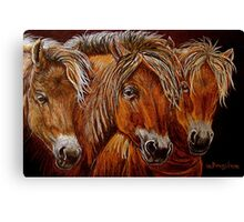 """Larry,Curlie and Moe"" Canvas Print"
