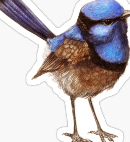 Blue Wrens, Russet and White Sticker