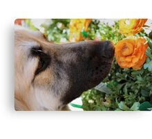 Sniff the Flowers Canvas Print