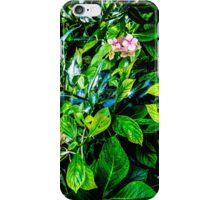 Green 2 iPhone Case/Skin