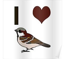 I heart sparrows Poster