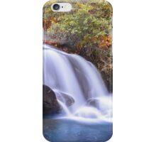 Ramsey Creek, South Carolina iPhone Case/Skin