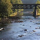 Trestle Over Lackawaxen River by reindeer