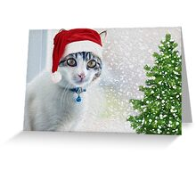 Whiskey The Christmas Cat Greeting Card