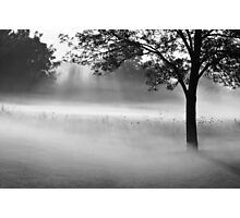 a beautiful morning Photographic Print