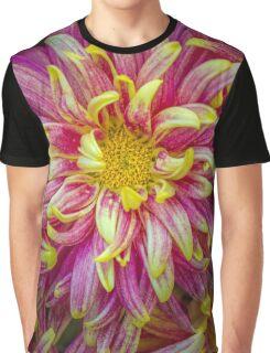 seeking comfort in crowds Graphic T-Shirt