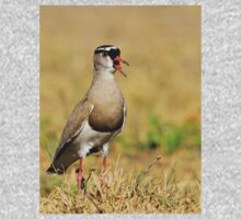 Plover Talk - Funny Nature and Entertaining Wildlife Kids Tee