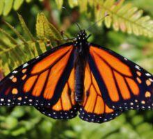 Monarch Resting Sticker
