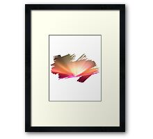 Brush Brightness Framed Print