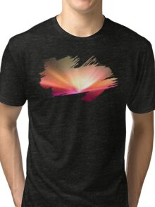 Brush Brightness Tri-blend T-Shirt