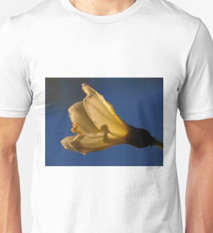 Light Filter ~ Part One Unisex T-Shirt