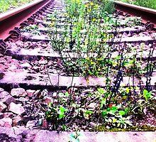 rail cologne germany by Krzyzanowski Art